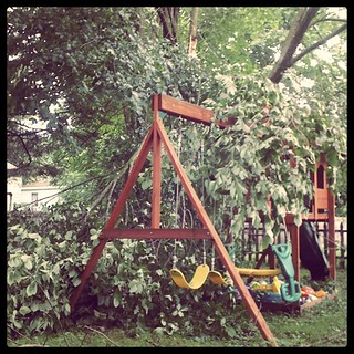 The fort turned into a treehouse last night... and survive hurricane-force gusts. #tstorm #btv | by JAG::PHOTO