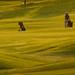 Golfspielplatz