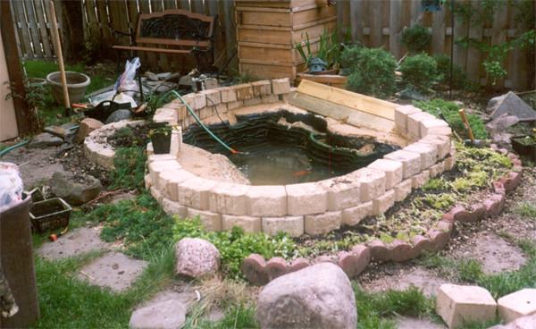 Small Backyard Pond Construction My First Backyard Pond