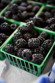 Blackberries | by ChristinaSphoto