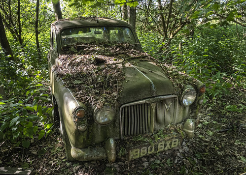 Rover P4 in the woods | by odin's_raven