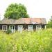 Abandoned summer cottage