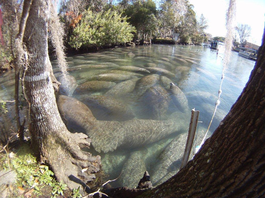 Crystal Water Way Myrtle Beach Sc