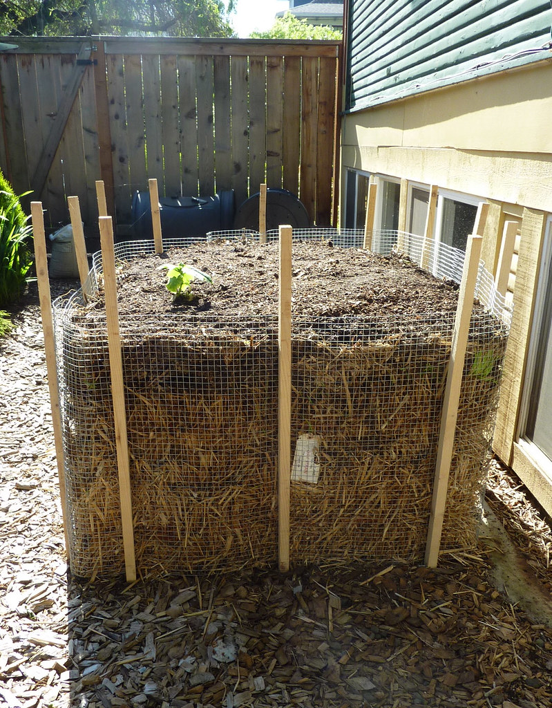 Portland Oregon Spring Garden Our New Straw Bale