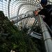 Gardens by the Bay | Marina South, Singapore