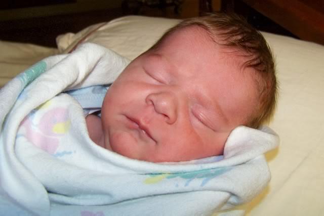 preston newborn