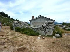 Traversée Croce-Frauletu : arrivée à la bergerie active de Frauletu