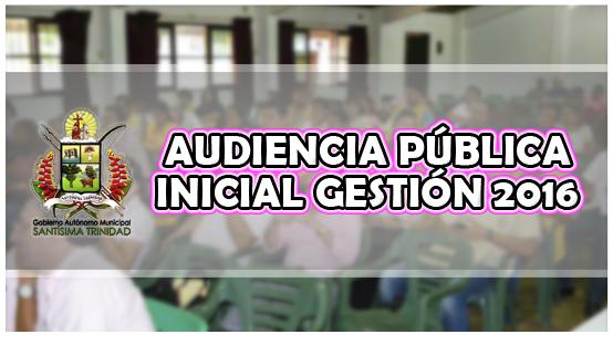 Audiencia Publica Inicial API 2016