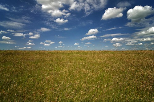 The Sky And The Field | by Peter Bongers