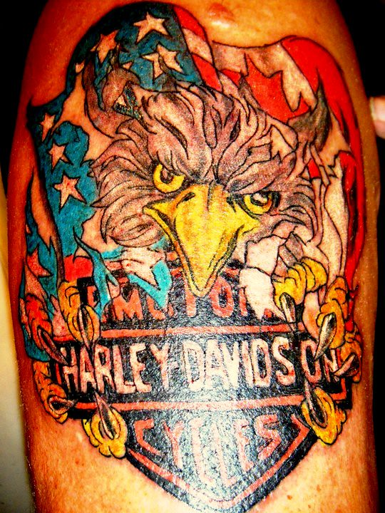 Eagle harley davidson tattoo flower tattoos tattoo for Free harley davidson tattoo designs
