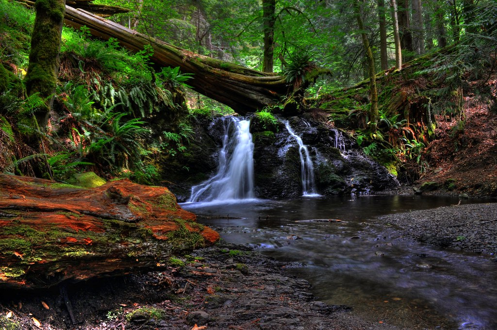 Language In 45 And 47 Stella Street: On Orcas Island, A Short Hike In Moran