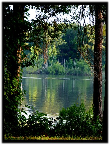 Lake And Trees | by Kat~Morgan