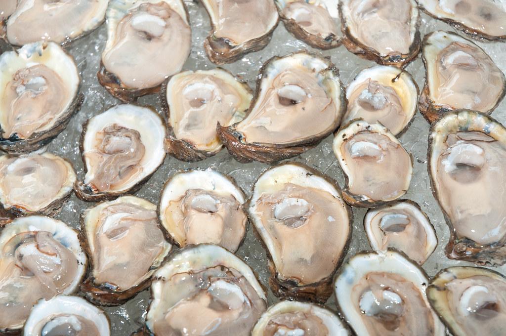 Fresh raw oysters on half shell   Photog Photog Jim ...