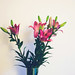 il lilium è un fiore ambiguo