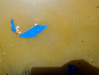 Abstract with blue plastic and toxic soup | by eliz.avery