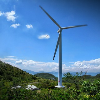 LAMMA WINDS (IMG_7301T) | by cyppoon (Chris Poon)