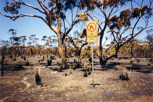 Fires can't read signs | by Digital Producer for ABC EP