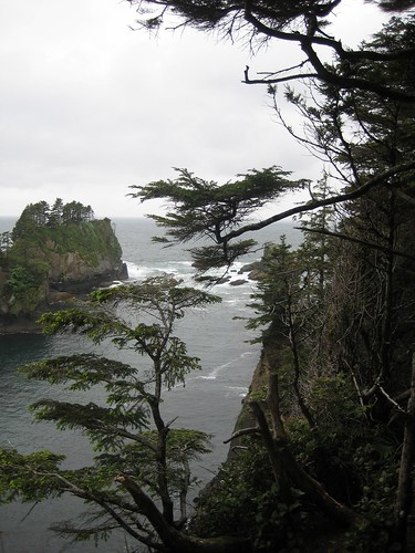 Cape Flattery | by shwn.david