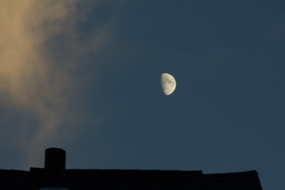 FIDDLER ON THE ROOF/ MOON DID THE BEST FOR ME ON EVE OF OLYMPIC OPENINGS!! | by Birder23