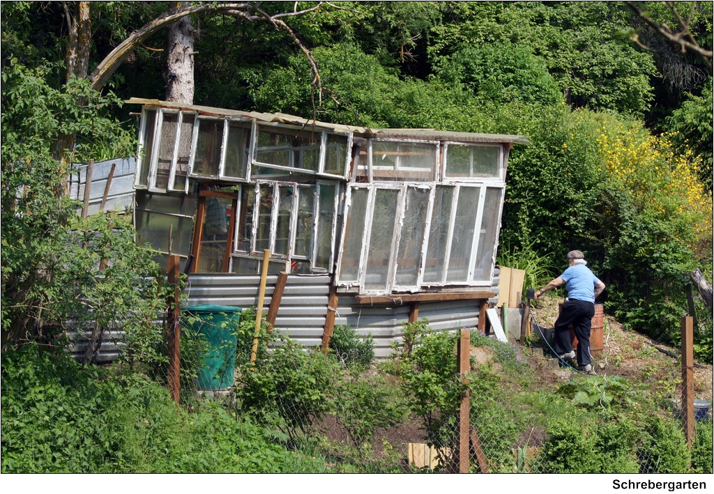 Alternativ alternative allotment garden auf dem weg for Architekt alternative jobs