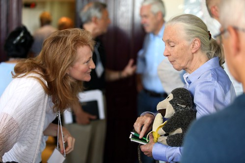 Krista Tippett speaks with Jane Goodall at the Halki Summit in Istanbul, Turkey | by On Being