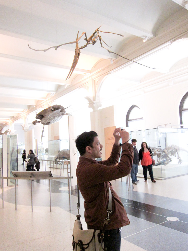 Is The Nyc Natural History Museum Free