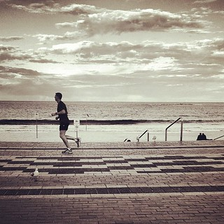 coogee run | by saltytheseal