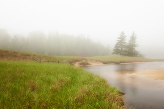 Foggy Day in Acadia | by MDanielsonPhoto