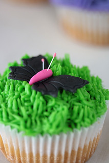 Butterfly&Grass Cupcake | by Kiss Yourself Photography