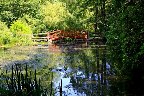 Pond | by Isle of wight Andy