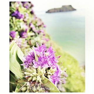 Good morning from the an old #picture... Old #memories and the best colour of life.. This picture was taken in #Tenby #Wales #UK صباح الخير على صور قديمة وذكريات حلوة كانت اجمل ألوان الحياة    Image created with #Snapseed | by Manal Q8