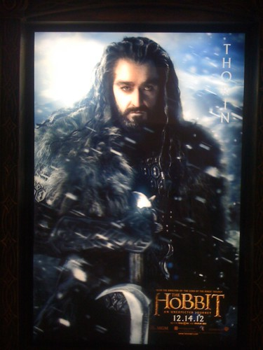 Thorin reticulated 3D poster | by theoneringnet