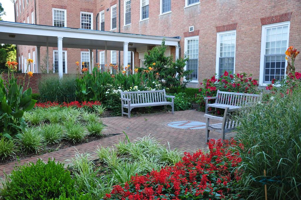 Benjamin courtyard garden 39lord baltimore39 hibiscus for Botanical gardens maryland