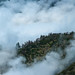 Forest in the Clouds, Moro Rock