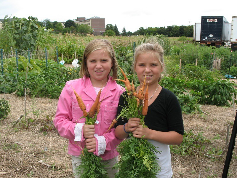 young girls harvesting carrots