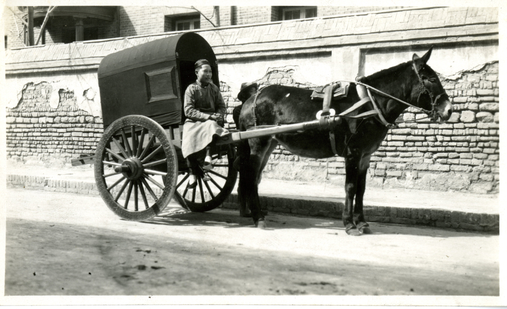 Old fashioned horse and cart 41