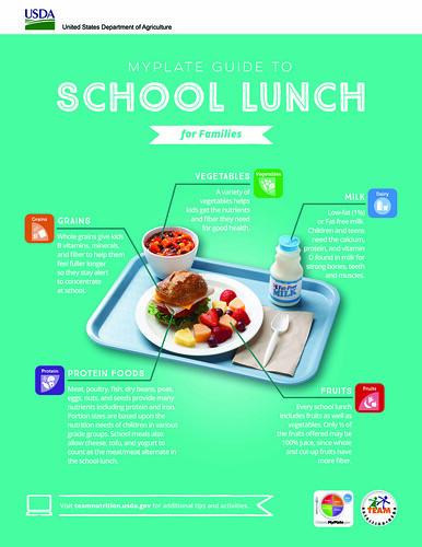 MyPlate Guide to School Lunch infographic