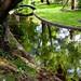 Un tout petit pont, une toute petite rivière… A very small bridge, a very small river
