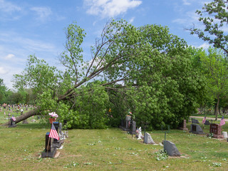Lakeview Cemetery Storm Damage-7 | by Josh152