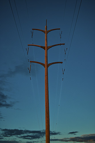 Electric Pole  #Sigma  #DP2 | by lesliegill