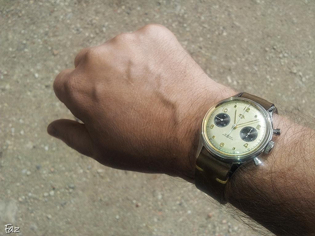"Chrono 1963 ""Ed"" Panda 29651960352_8c94abfcb0_b"