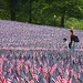 Mother and boy walking through field of American flags.