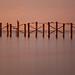 The last days of the Newport Fishing Pier Park | 120615-2369-jikatu