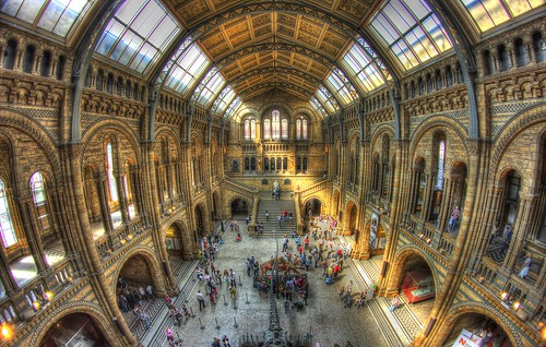 Natural History Museum Upstairs | by Mike Pearce Photography