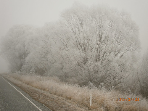 Hore frost in Fruitlands, Central Otago. | by metservice.nz