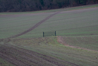 Random Gate In Field | by Christopher Fitzmaurice