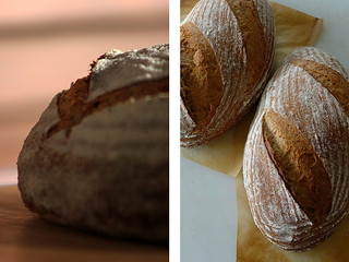 Boule + Country Breads | by PiPs75