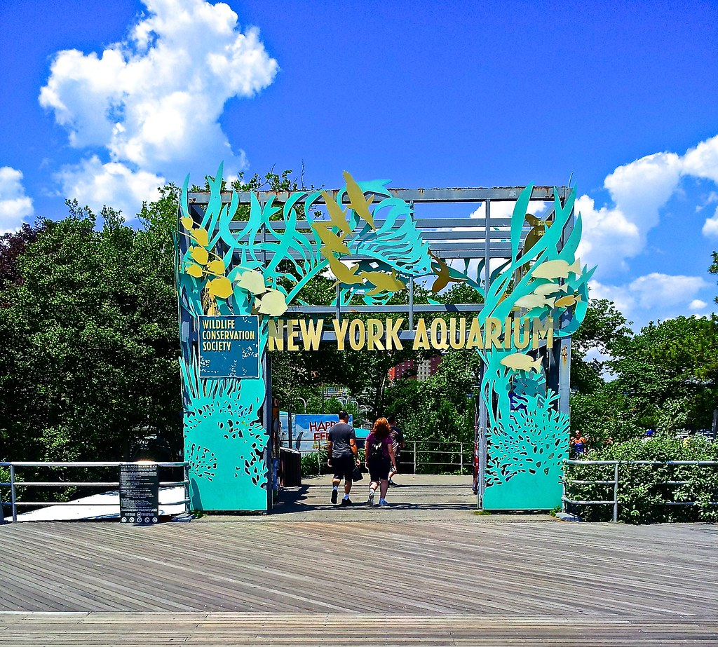 New york aquarium coney island lost in journeyrama Aquarium in coney island