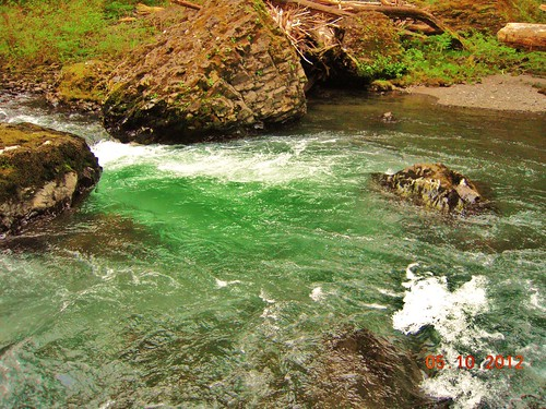 Green Water | by Zombie Girl*