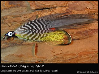 #201/365 Fluorescent Grey Ghost tied by Glenn Peckel | by pacres